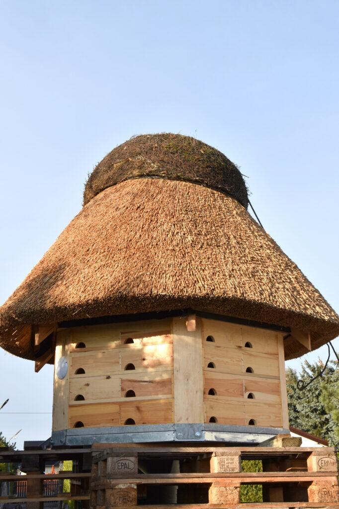 Zdjęcie budki dla jerzyków w Tarnowie Podgórnym