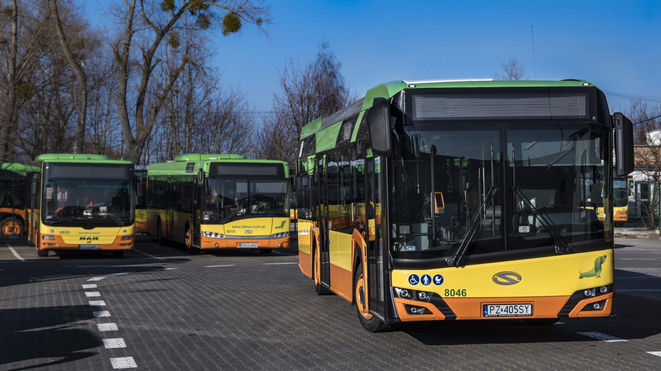 Na zdjęciu pojazdy TP-BUS, czyli autobusy, które przewożą mieszkańców Gminy Tarnowo Podgórne